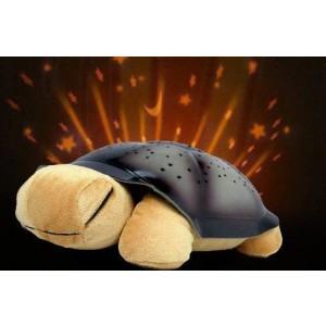 Magiczny świecący żółw