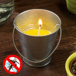 Sviečka proti hmyzu