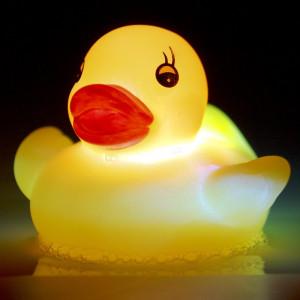 LED gumová kachnička