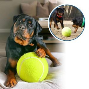 Gigantický tenisový míček